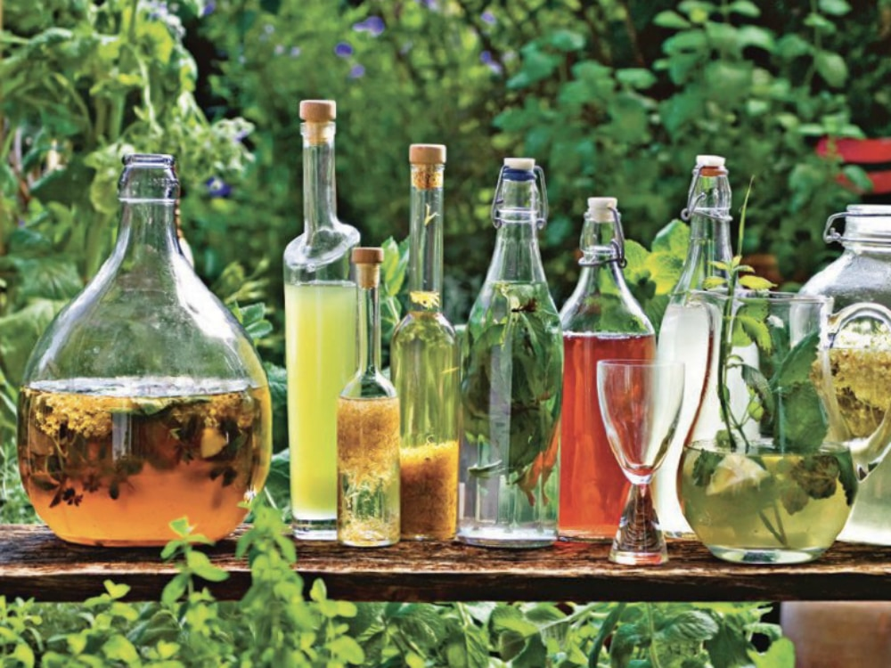 This New Garden-Inspired Mixology Book is Redefining Mocktails