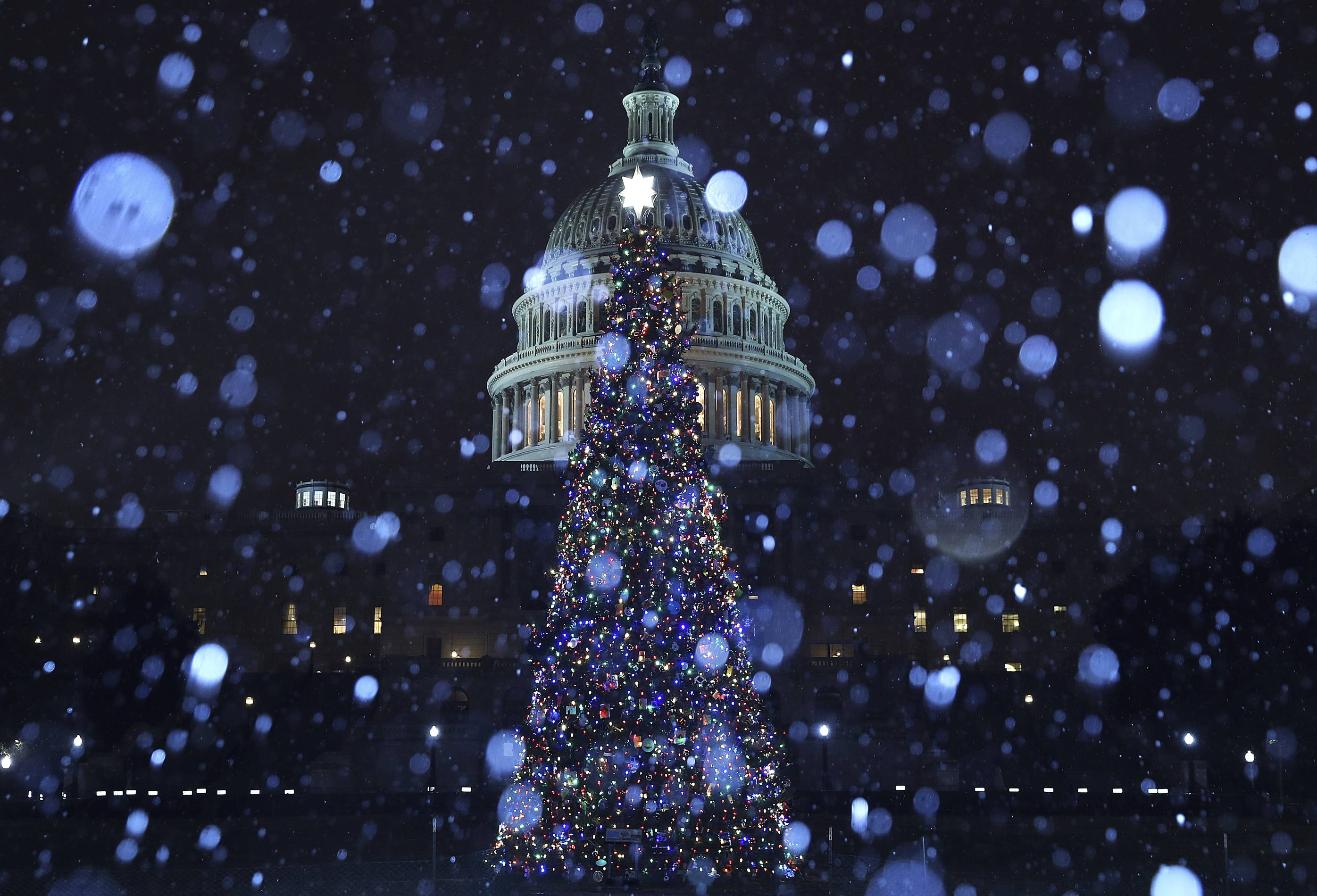 9 Best Holiday Lights Displays In Washington D C
